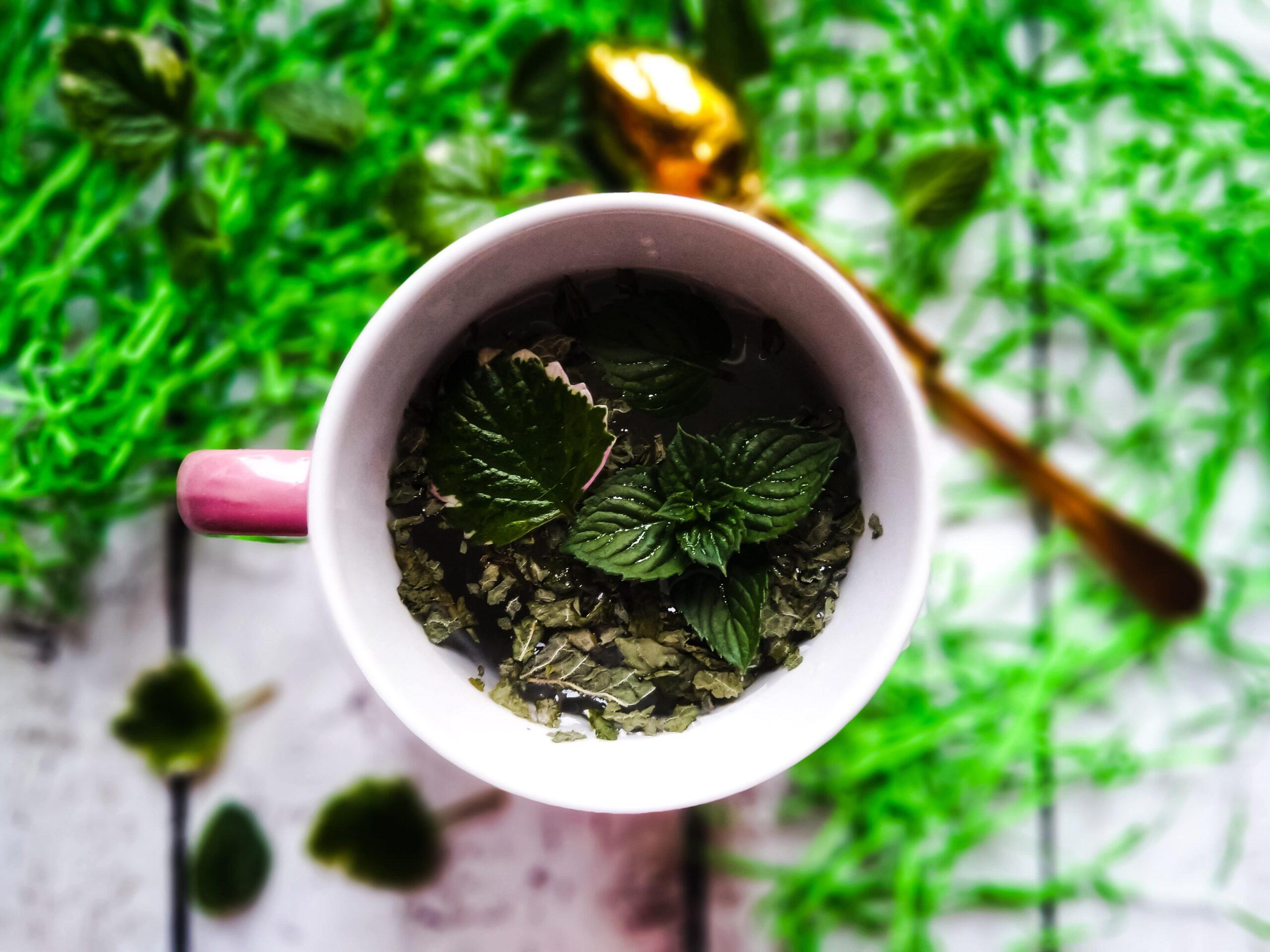 Dlaczego warto pić zioła?